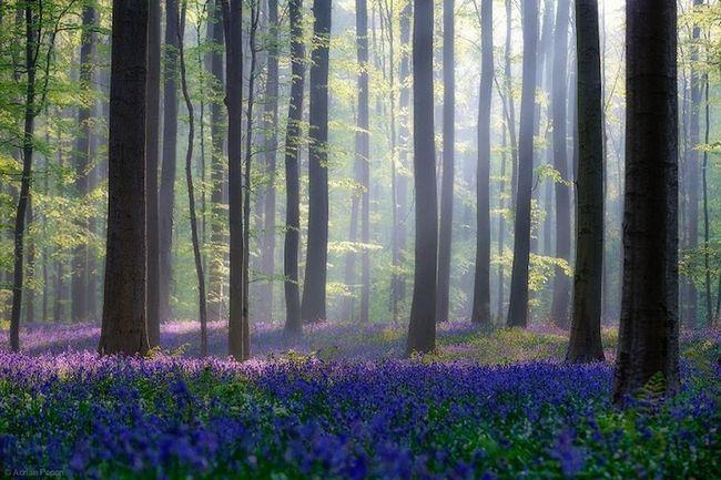 Tajanstven i lijepa mjesta na planeti Zemlji
