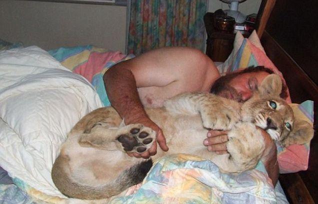 U 2007. godini, južnoafrički Andre i supruga Talita Potgieter uzeo u svoj dom lavica, od kojih je gotovo odmah nakon rođenja, majka je odbila. Od tada se pretvorio u 160 kilograma životinja, koji, međutim, skupo voli domaćina.
