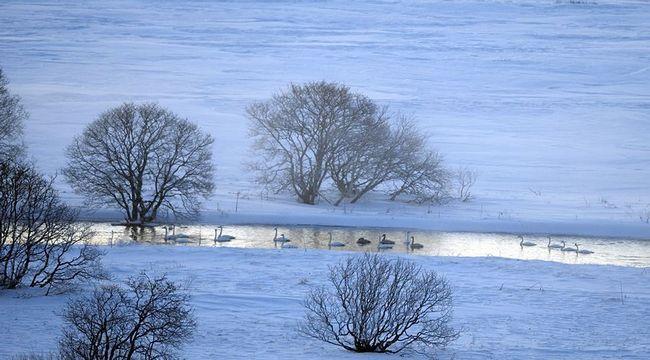 Lov šarana na jezeru od tisuću otoka
