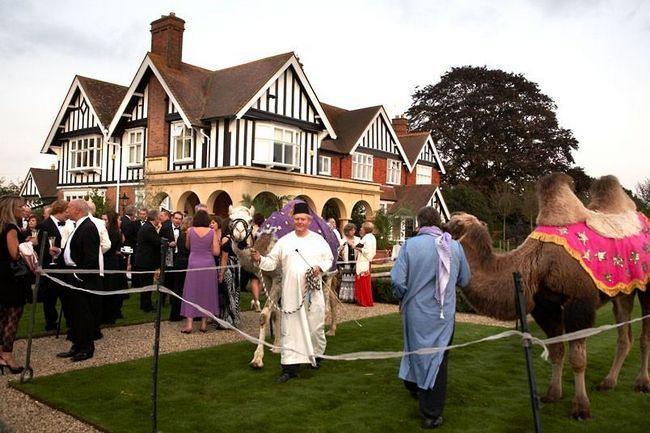 Englez zamijenio svoj automobil na kamile
