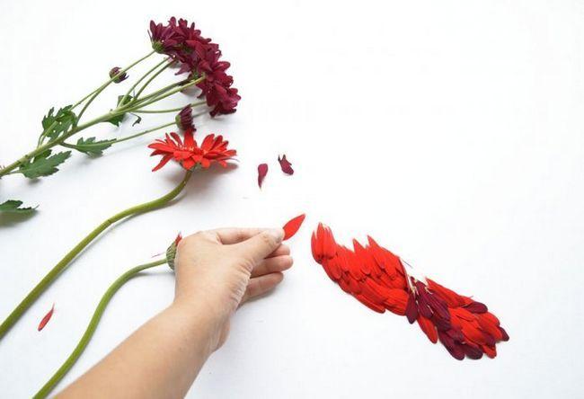 Aplicirano cvjetnih latica iz Hong Yee
