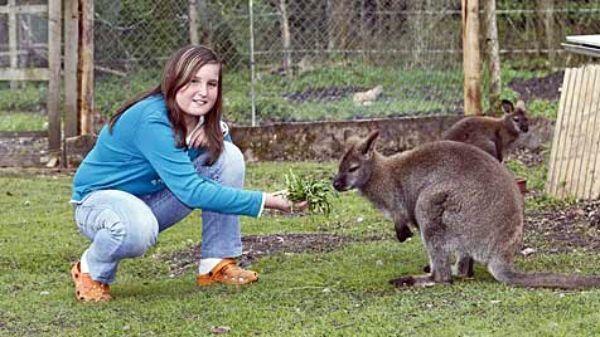 Životinja je odveden do najbliže veterinarske ambulante