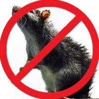 Борьба с мышами , выбираем прибор правильно