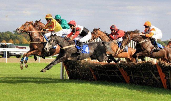Чистокровные верховые лошади преодолевают препятствие на трассе стипль-чеза