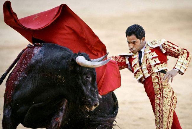 Ako pogledate akcije matador, može se zaključiti da li je poklopac nije dovoljno da razljutili bika, ali kako bi se osigurala sebi matador.
