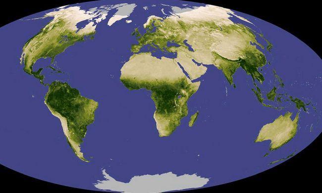 Na Zemlji, oko 2 miliona vrsta života - i od 5 do 100 miliona eura, što je još uvijek nepoznat, pa kaže da je National Science Foundation. Iznad: NASA koristi satelitske snimke da pokaže nivo vegetacije na Zemlji. Sive zone ukazuju na lokaciju, koji je bio u mogućnosti da dobiju bilo kakvu informaciju. (NASA).