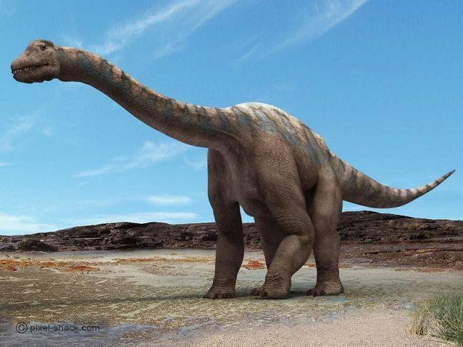 Argentinosaurus (lat. Argentinosaurus)
