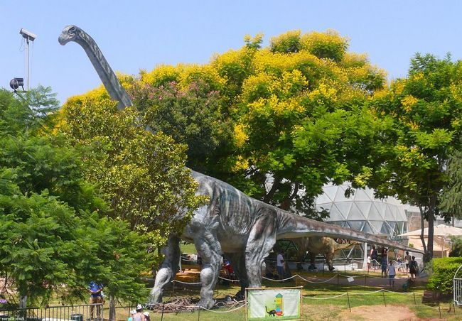 Raspored Argentinosaurus.