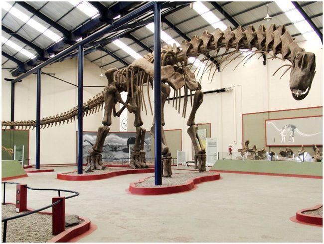 Kostur Argentinosaurus.