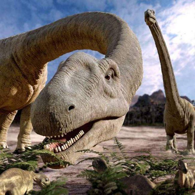 Family Argentinosaurus.
