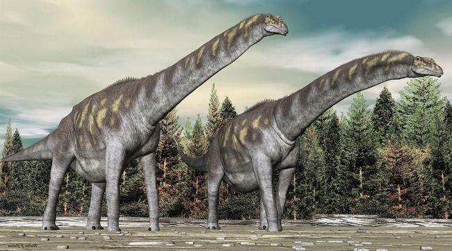 Par Argentinosaurus.