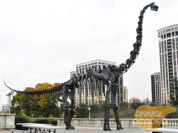 Tako je ovaj dinosaur izgledao kao ulicama modernog grada. Njegov visina - gotovo 9 kata modernog doma