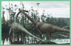 Diplodocus / diplodoc