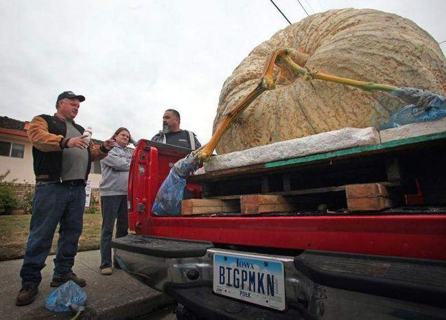Дон Янг (слева) из Де Мойн, штат Айова ждет в очереди на взвешивание на Конкурсе на самую большую тыкву в Хаф Мун Бей 12 октября 2009 года. (UPI/Terry Schmitt)