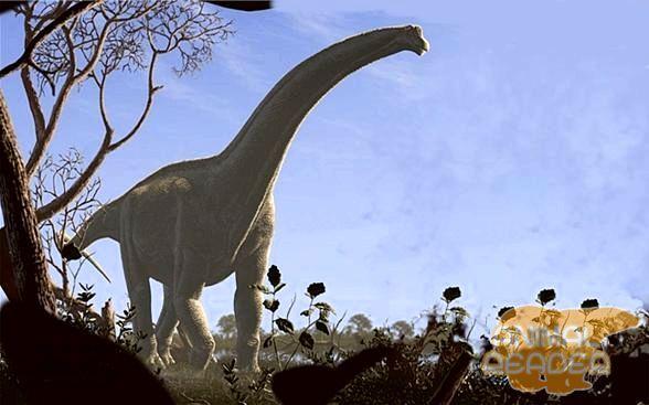 Futalognkosaurus dukei Calvo - gigant u svijetu dinosaurusa