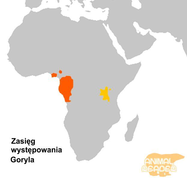 Staništa gorila