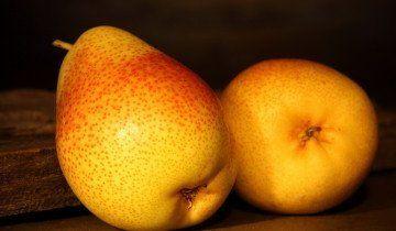 U kruške drva ljepotu sadrži do 9% šećera, fotodes.ru