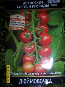 Palčica sorte paradajza