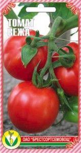paradajz Tower