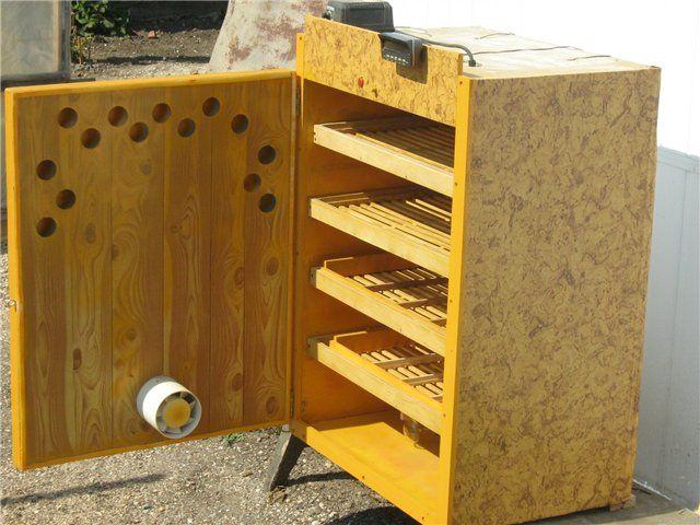 Шкафчик для выведения перепелов