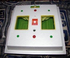 Инкубатор «квочка». Прекрасное устройство для небольшого фермерского хозяйства!