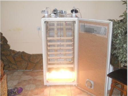 incubator din frigider