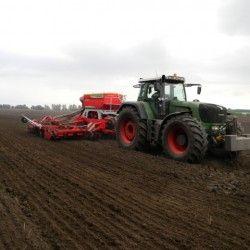 Iarnă tehnologie intensivă cultivarea grâului