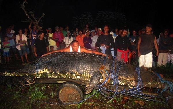 Na Filipinima, zarobljeni najveće slane krokodil