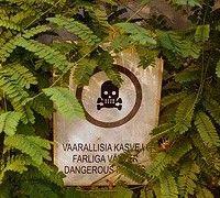 Ядовитые растения и меры предосторожности при контакте с ними
