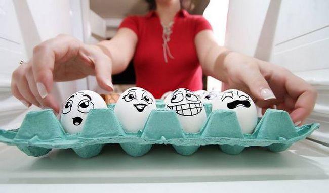Самые необычные яйца животных