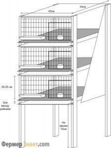 Клетки для бройлеров: своми руками делаем удобное жилье для птицы