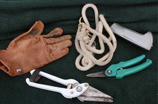 Instrumente pentru tunderea copite de tap
