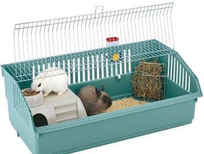 Особенности клеток для декоративных кроликов