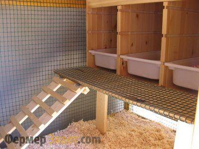 Гнездо для кур с лесницей