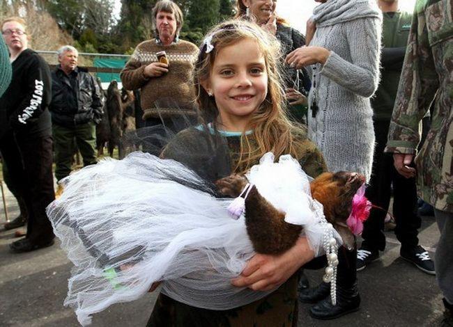 Samo pogledajte - s nekim lijepo lice je tu devojčicu, star jedva 10 godina, jer drži mrtve životinje, otpušten je kao lutka!