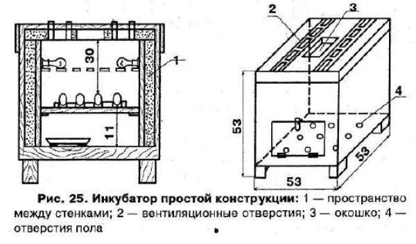 Чертеж, который поможет сделать инкубатор для перепелов своими руками