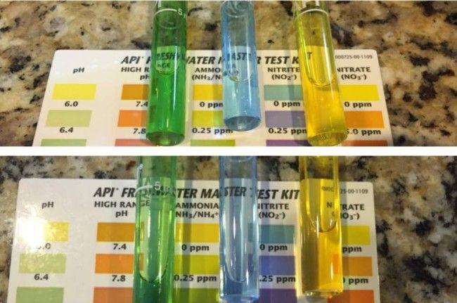 Indikatori amonijaka i nitrata.