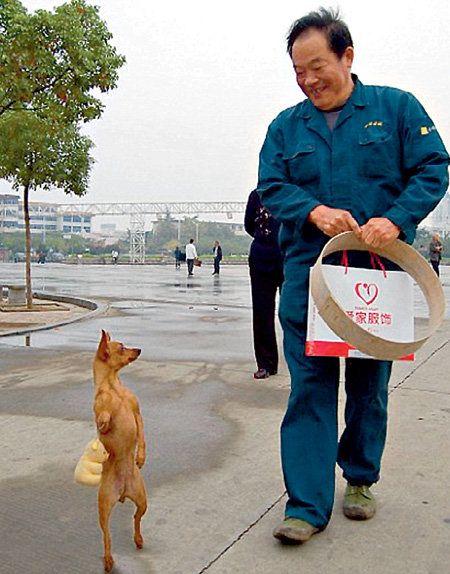 Zhou je uvijek poslastica u prodavnici za kućnog ljubimca
