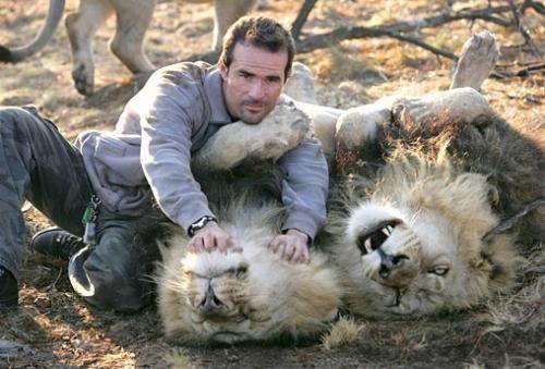 Kevin Richardson - kotač lavova