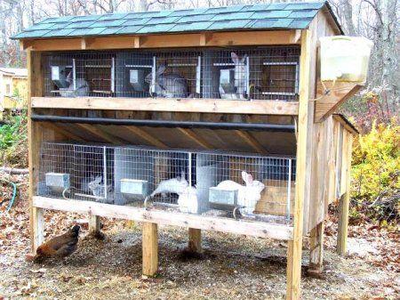 Kavezi za zečeve sa svojim rukama