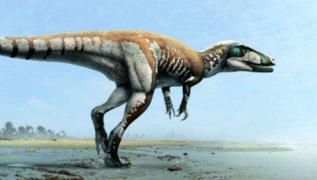 Talon zatvarač - najveći dinosaurus Australije.