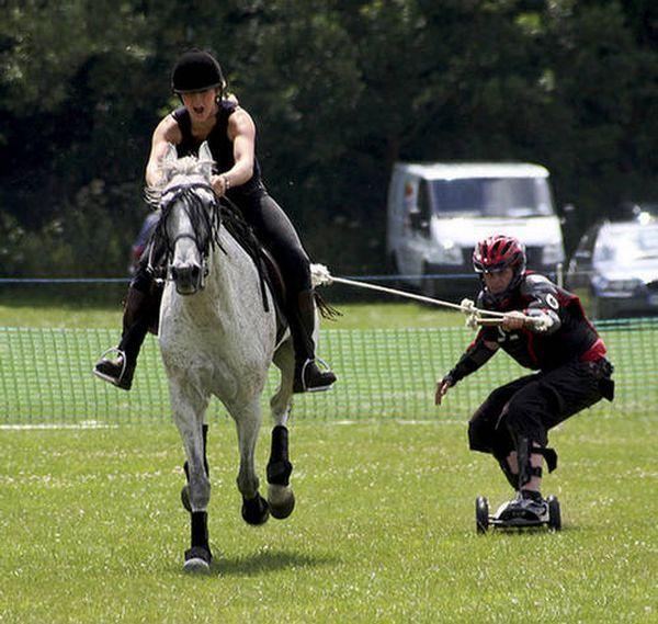 Bordiga konjički (konj-internat): novi ekstremni sport