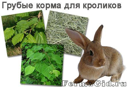 Изображения грубых кормов для кроликов