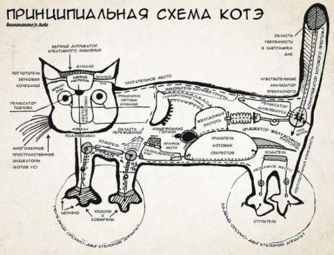 Shema-kote