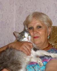Mačka je bila 3.000 kilometara u potrazi za onima koji su napustili domaćina
