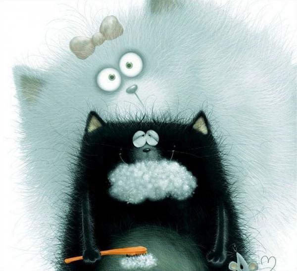 Mačka znakić mačka ide u školu