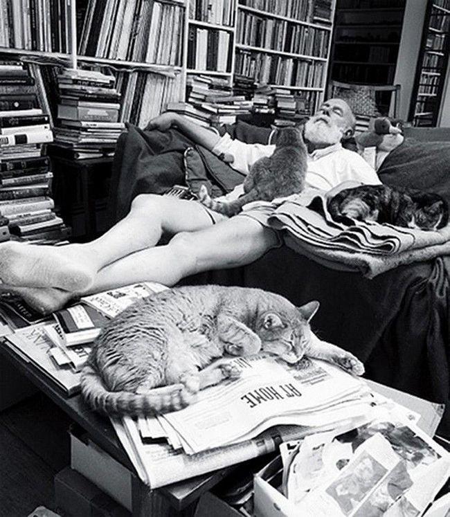 Mačke poznati umjetnici
