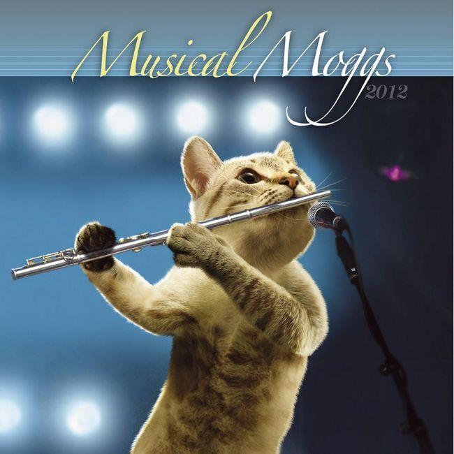 Mačke muzičara u kalendaru Musical Moggs 2012