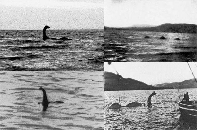 Incredible slike Nessie čudovište.