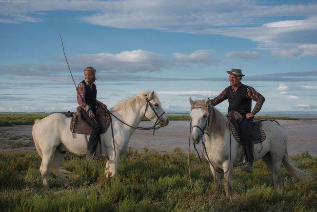 Kone prírodná rezervácia Camargue